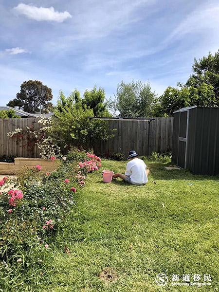 【澳洲132收官倒计时】在墨尔本我们收获了真正的家庭生活